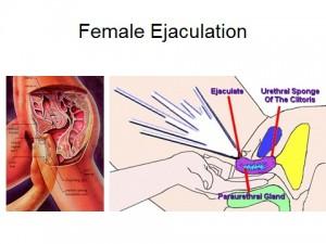 Female-Ejaculation